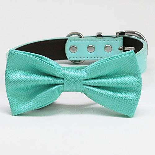 Turquoise bow San Jose Mall tie Nashville-Davidson Mall collar and XS XXL to