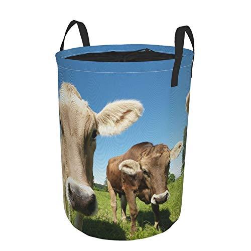JOSENI Plegable Grande Cesto de Ropa Sucia para el Hogar,Cerrar Dulce Foto de Vacas en la Pradera en un Cielo Abierto,Lavandería Cesta de Almacenaje Impermeable con Cordón,14' x 19'