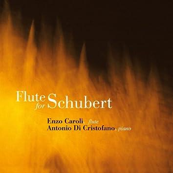 Flute for Schubert