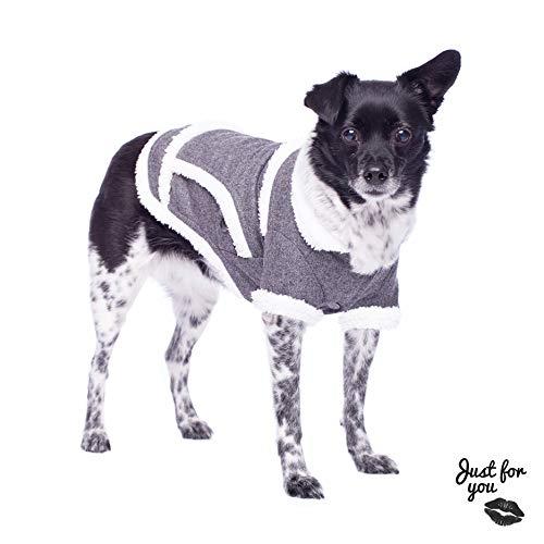 Hondenmantel voor kleine hondenrassen maten S, M en L winter hondenjas grijs wit hondenjas jas jas zeer warm zacht met kraag en drukknopen katoen gevoerd hond kleding pullover kleding, Large, grijs wit