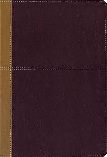 KJV, Amplified, Parallel Bible, Large Print, Leathersoft, Tan/Red, Red Letter Edition: Two Bible...