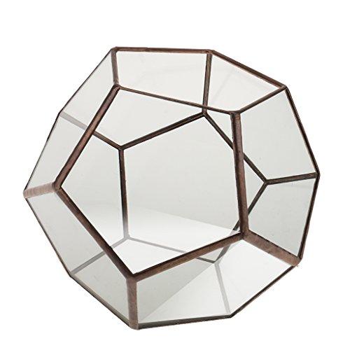 Mini Glasterrarium Geometrisches Glas Sukkulente Pflanzgefäß Haus Dekoration - 15 x 15 x 15cm