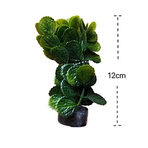 N/S Plantas plásticas