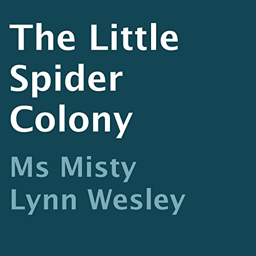 The Little Spider Colony audiobook cover art