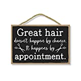 Honey Dew Gifts Hanging Wooden Signs, Great Hair Doesn't Happen By Chance, They Happen By Appointment, 7 inch by 10.5 inch, Hanging Wood Decor
