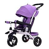 NBgycheche Triciclo Trike Triciclo Triciclo, Multiusos for niños Triciclo Titanio vaciar de Ruedas, 1-6 años Triciclo del bebé, 3 Colores, 55x92x (80-105) cm (Color: Gris) (Color : Purple)