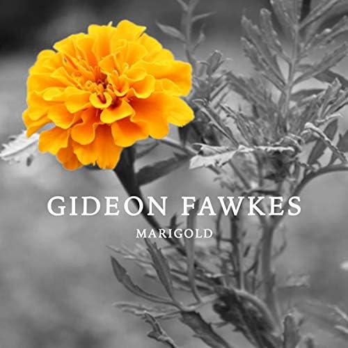 Gideon Fawkes, Ryan Erwin