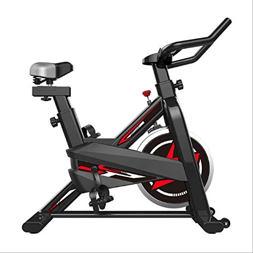 JJSFJH Exercise Bike,Indoor Cycling Bike Stationary - Cycle Bike with Ipad Mount and Comfortable Seat Cushion