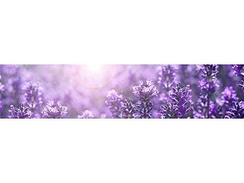 Oedim Fototapete Wand Lavendelfeld| Verschiedene Maße 200 x 150 cm | Dekor Esszimmer, Wohnzimmer, Zimmer