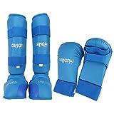 GINGPAI Juego de karate 2 en 1, guantes de karate, espinilleras de karate para niños, hombres y mujeres (azul, S)