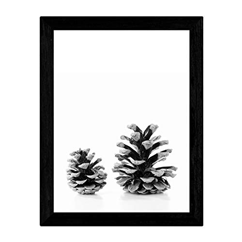 Nacnic Lámina de Dos piñas de Pino Frontal en tamaño A3, en Blanco y Negro Poster Papel 250 gr y tintas Marco