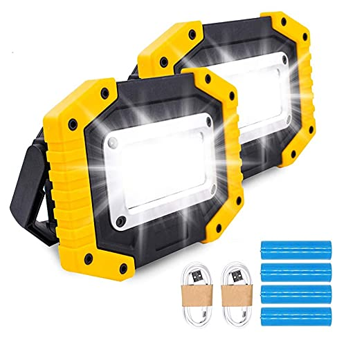 Trongle LED Rechargeable Work Lights, 30W Floodlight Battery Security Light with 3 Modes Outdoor COB Camping Lights with USB Waterproof for Garage, Fishing, Hiking, 2 Packs (Battery Included)
