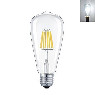 Rayhoo 6W Dimmable Edison Style Antique LED Filament Tubular Light Bulb, E26 Medium Base Lamp, T14(T45) Tubular Shape,60W Incandescent Replacement,600LM,3-Pack