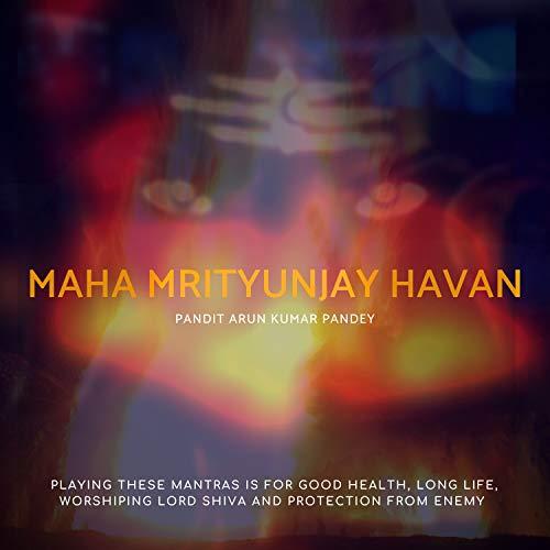 Maha Mrityunjay Mantra 108 Times Havan (Original Mix)