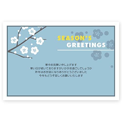 【官製 10枚】 寒中見舞いはがき KSA-13