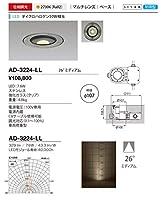 山田照明/バリードライト AD-3224-LL 電気工事必要型