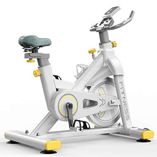 RJJBYY Bicicleta Giratoria Silenciosa con Control Magnético