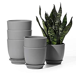 Plastic Plant Pots – POTEY 6.3 Inch and 5.5 Inch Indoor Planters with Drainage Hole and Trays, for Succulent, Snake Plant – 001, Gray, Set of 6