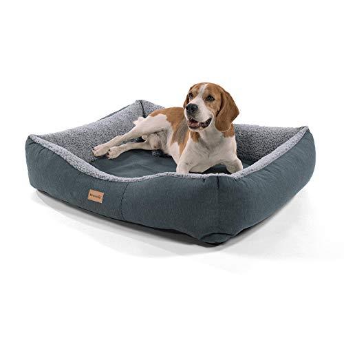 Brunolie Emma Hundekorb, waschbar, hygienisch und rutschfest, luftiges Hundebett mit Kissen zum Kuscheln, Größe M (80 x 70 x 20 cm) Grau