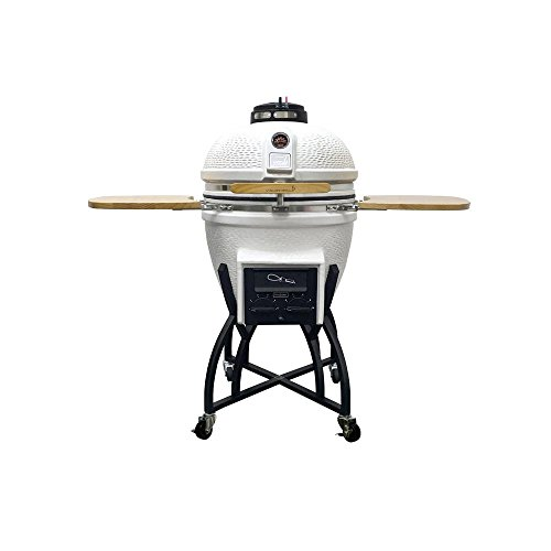 Vision Grills Kamado Professional Ceramic Charcoal Grill in White with Cover