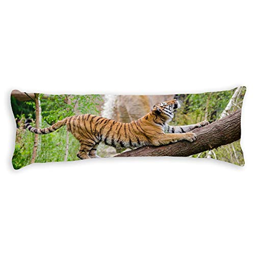 Blake55Albert Tiger Stretching Over Brown Trunk Cotton Body Pillow Covers 20x54 with Zipper Decorative Body Pillow Cases Cover for Adults Kids Teen Girls Bed Decor