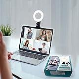 Best Light Laptops - Video Conference Lighting Kit 3200k-6500K Dimmable Led Ring Review