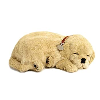 Best breathing dog toy Reviews