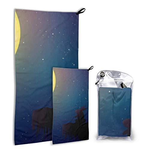 N\A Lapin Lune Lumière Nuit 2 Pack Serviette De Séchage en Microfibre Lady Serviette De Plage Ensemble Séchage Rapide Meilleur pour Gym Voyage Randonnée Yoga Fitnes