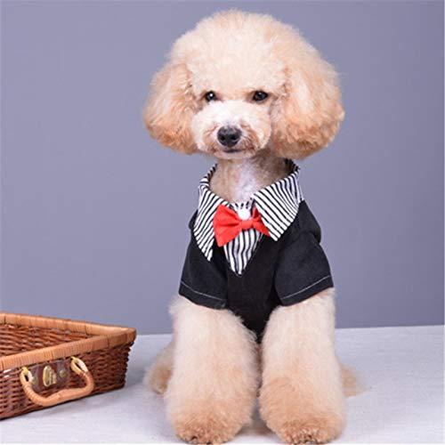 RQJOPE Traje de Perro para niño, Corbata de Esmoquin, Ropa para Perros pequeños, Ropa para Cachorros de Yorkie, Chihuahua, Gato, caniche, Pomerania, Pug, Abrigo para Perro, Disfraz de Boda