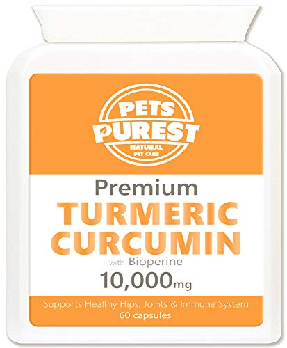Pets Purest 100% Natural Premium Turmeric For Dogs 10,000mg with Active Bioperine Cats, Horses & Pets Powerful Antioxidant Supplement For Joints & Hips 60 capsules