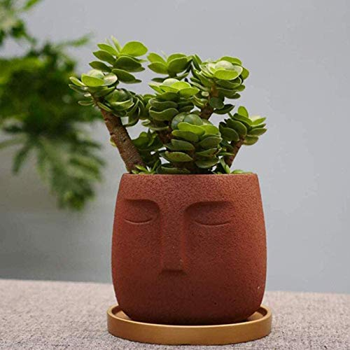 ShenMiDeTieChui Simple Ceramic Vase, Succulent, Marijuana Flower Cactus, Interior and Outdoor Flower Pots, Balcony, Bonsai Decoration, Abstract Cement (Color : Brown)