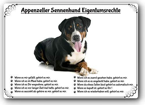 Merchandise for Fans Blechschild/Warnschild/Türschild - Aluminium - 20x30cm Eigentumsrechte Motiv: Appenzeller Sennenhund (06)