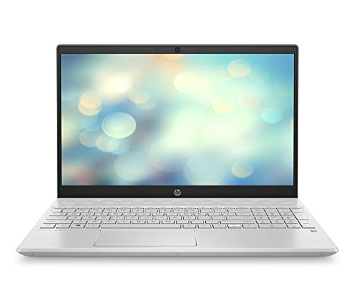 HP Pavilion 15-cs3255ng (15,6 Zoll / FHD IPS) Laptop (Intel Core i5-1035G1, 8GB DDR4 RAM, 512GB SSD, Nvidia GeForce MX130 2GB) Windows 10 Home, Silber