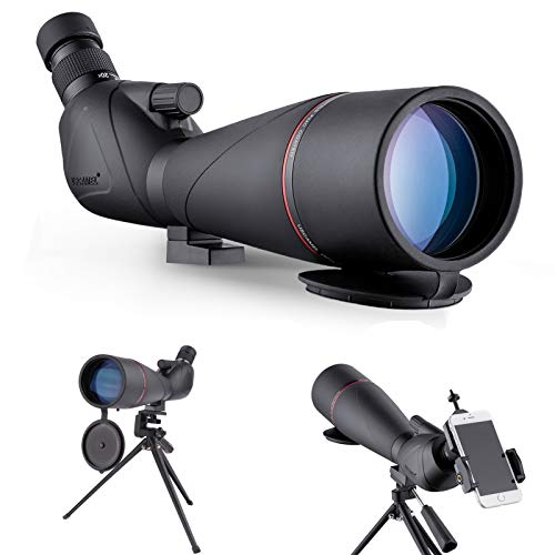 Catalejos 20-60X80 Telescopio Monocular de Observación de Aves Resistente al Agua HD con Adaptador de Teléfono + Trípode para Tiro con Arco, Safari, Observación de Estrellas, Camping