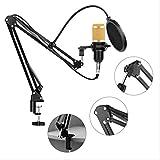 Audio de condensador Micrófono con cable de 3.5 mm Micrófono de estudio profesional para radio Braodcasting Soporte para micrófono cantante talla única Oro
