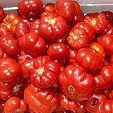 Tomate Montserrat 25 semillas de Portugal 100% natural cría/absoluta Rarität/Masenträger ideal para ensalada y aperitivos