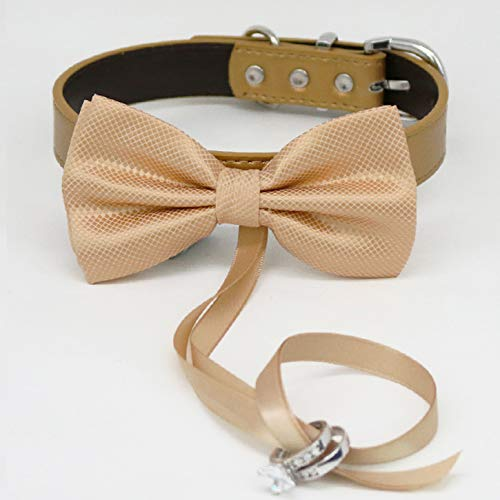 Champagne bow tie collar Leather Max 40% OFF dog of honor ring Finally resale start bearer