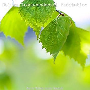 Music for Meditation Sessions (Shakuhachi)