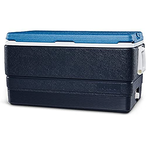 Igloo Maxcold 70 Kühlbox,66 Liter, Eisblau