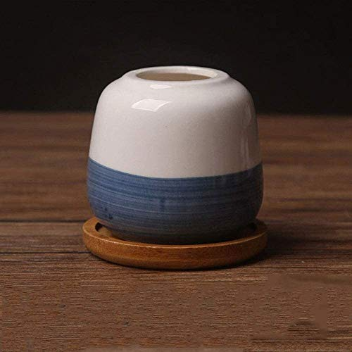 Una serie di specifiche con vassoio Soggiorno desktop Vasi in ceramica, Succulente dipinto a mano Vasi di ceramica, di stile giapponese e smaltate bianche e blu carne creativo Fiori bianco della porce