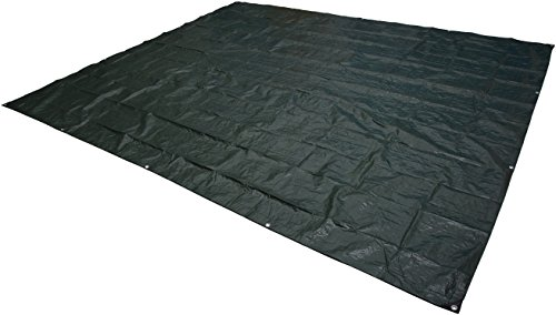 Amazon Basics Waterproof Camping Tarp - 10 x 12 Feet, Dark Green
