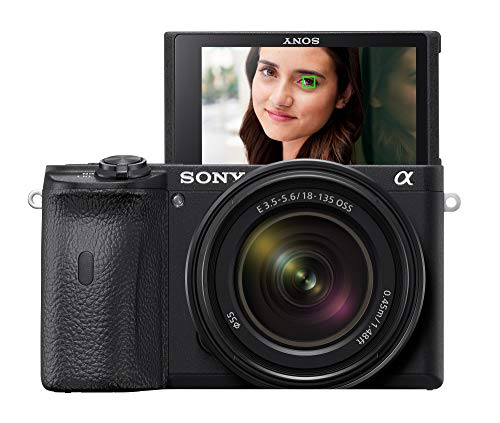 Sony Alpha A6600 Mirrorless Camera with 18-135mm Zoom Lens