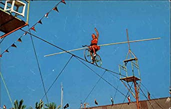 Circus Hall of Fame Sarasota, Florida Original Vintage Postcard