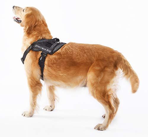 Alimao® Arnés para Perros de Trabajo Pesado, Prevención de tirones ...