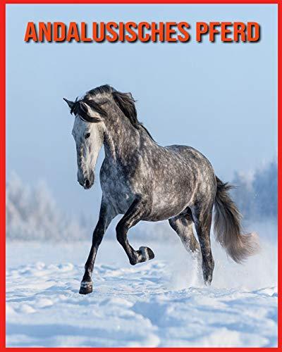 Andalusisches Pferd: Sagenhafte Fotos & Buch mit lustigem Wissen über Andalusisches Pferd für Kinder