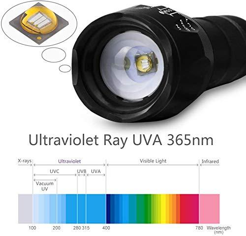lydnkim UV LED Torch Blacklight 365nm UV Flashlight Black Light Ultraviolet Detector for Dog Cat Urine, Pet Clothing Food Fungus and Bed Bug, Waterproof,3 Modes 2