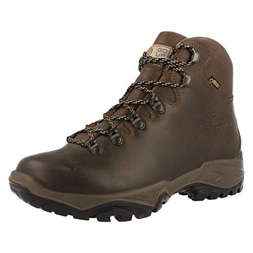 Scarpa Terra GTX Gore Tex Chaussures de randonnée pour femme - Marron...