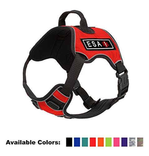 Dogline Quest No-Pull Dog Harness with 3D Rubber ESA Removable Patches Reflective Soft Comfortable Dog Vest with Quick Release Dual Buckles Black Hardware and Handle 18 to 22 inches Red