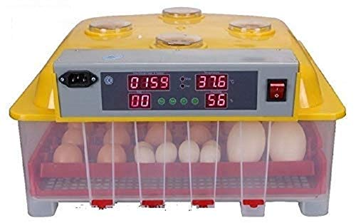 TM&W - special for poultry farming grade ABC-48 AE-48 Digital 48 Egg Incubator Clear Hatcher with Automatic Humadity controller