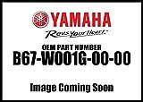 YAMAHA FZ-10 MT-10 GENUINE YAMAHA CLUTCH PLATE KIT B67-W001G-00-00